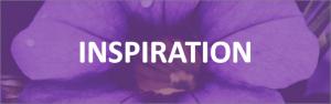 cic-inspiration