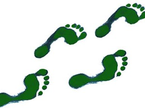 green-footprints-md