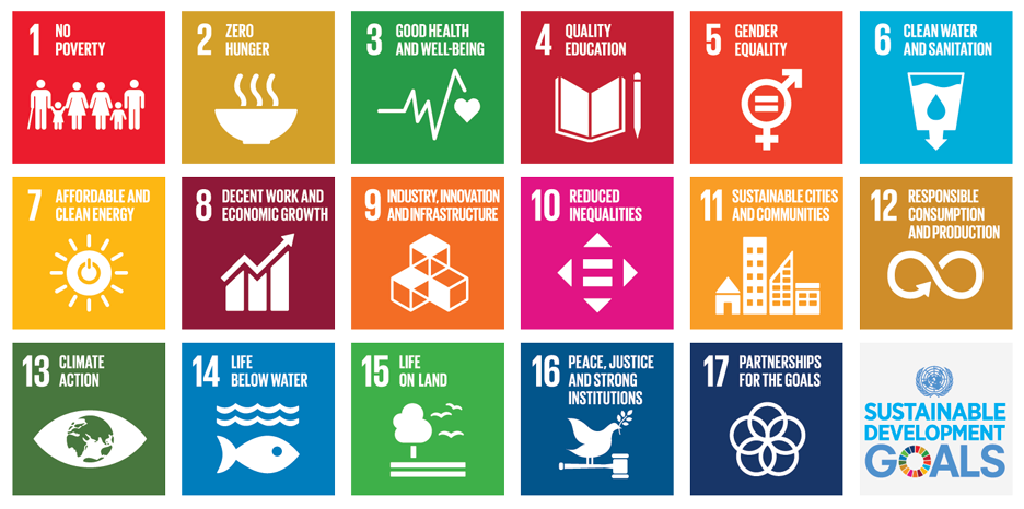 Overview of the Sustainable Development Goals